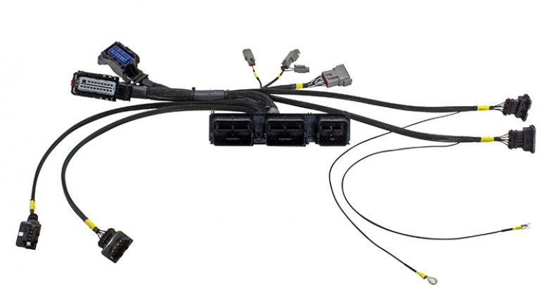 AEM Infinity Plug & Play Harness for Ford Coyote Racing Engines